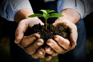 Hands holding soil and green plant demonstrating a new sustainable economy based on equality to all goods an services