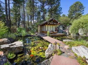 Asian landscape with koi pond is an Inspired setting to receive new beliefs