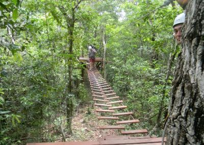 Selva Maya No Hands Rope Bridge