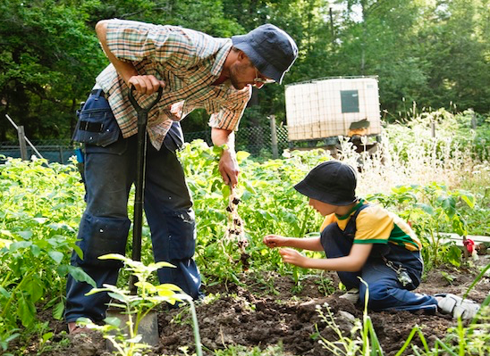 Man and child Working together in garden